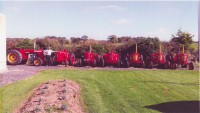 7 David Brown tractor collection for sale